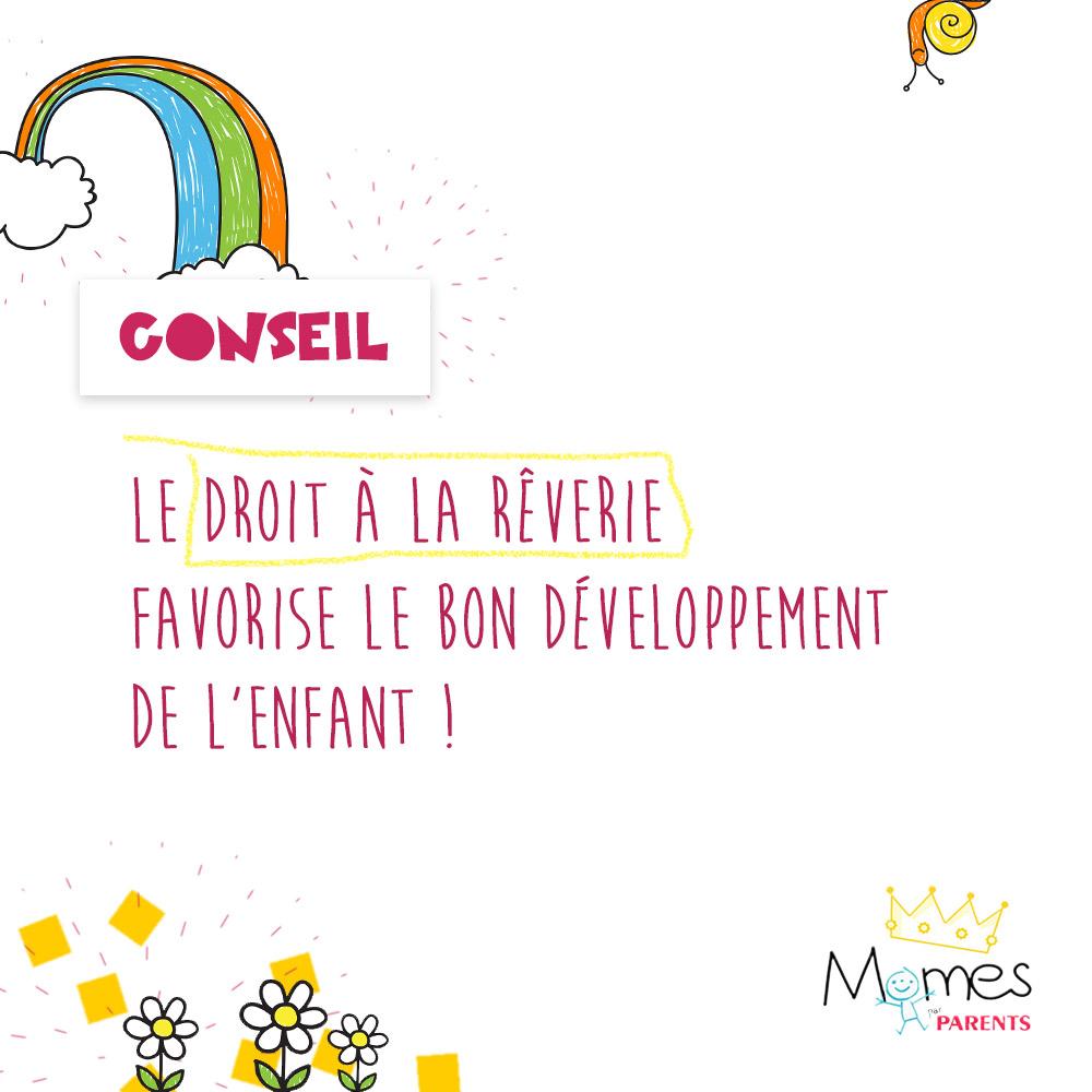 MOMES-Conseil-7